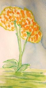 flower 2 compressed