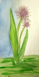 flower compressed